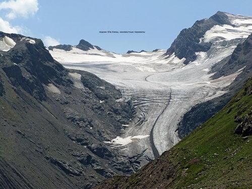 Квиш южный, ледник